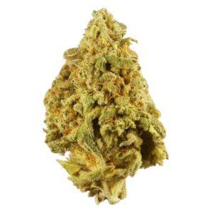 9 Pound Hammer Weed UK