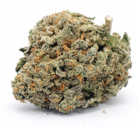 Blueberry Pie Marijuana UK