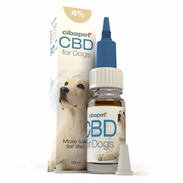 Buy Cibapet CBD oil 4% for dogs UK