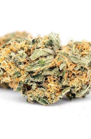 Citrus Haze Weed UK