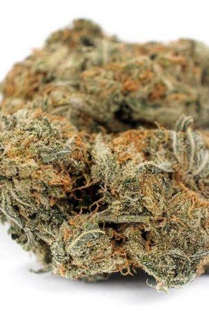 Diablo Weed Strain UK
