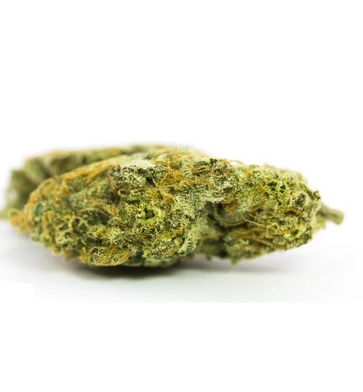 Dr. Grinspoon Marijuana UK