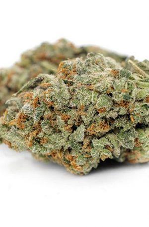 Gorilla Zkittlez Marijuana UK