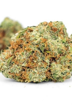 Grape Stomper Weed UK