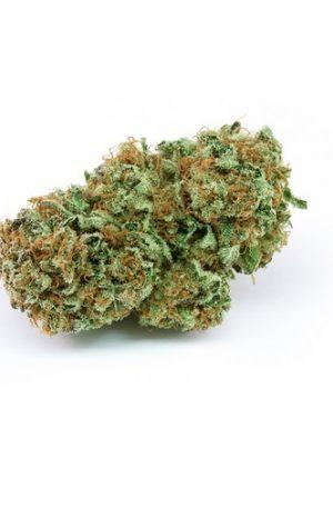 Harlequin Weed Strain UK