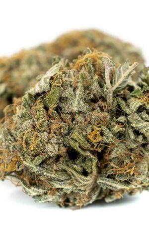 Hindu Kush Weed UK