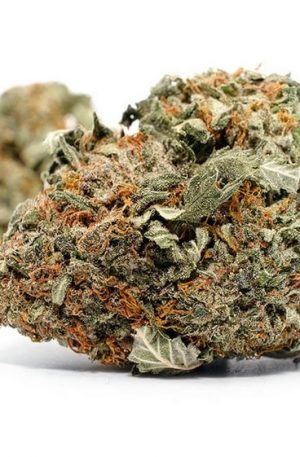 Ice Wreck Weed Strain