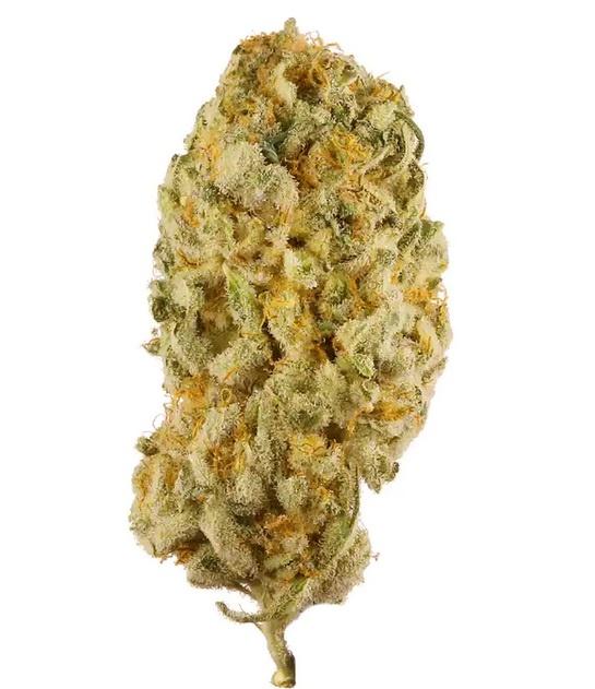 Jack Herer Weed UK