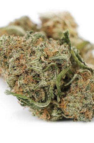 Juicy Jack Weed UK