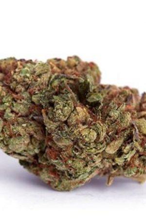 Lavender Weed Strain UK