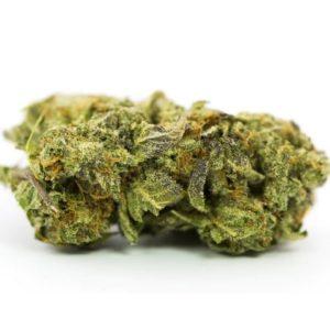 Master Kush Weed UK