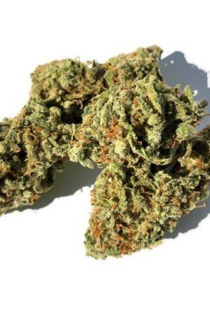 Skunk #1 Weed UK