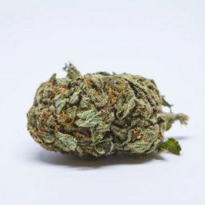 White Berry Weed UK