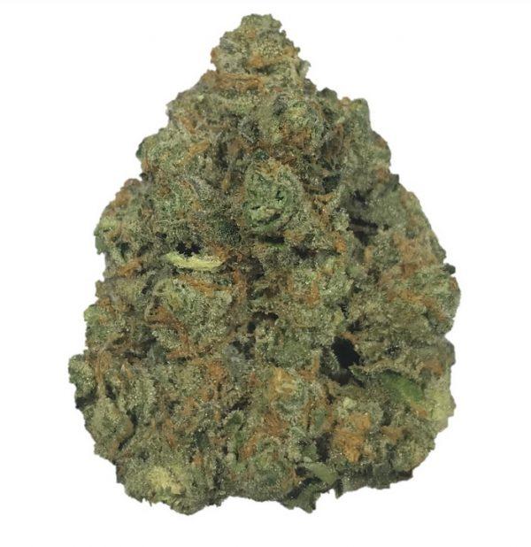Gary Payton Marijuana (33.0% THC – Premium)